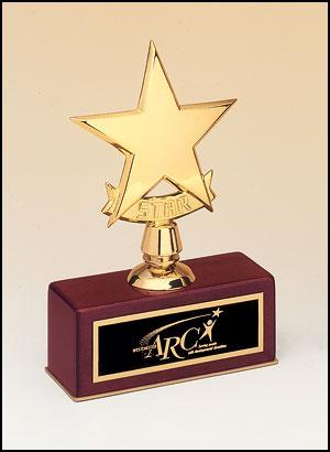 OCT108 - Polished Metal Goldtone Star Casting